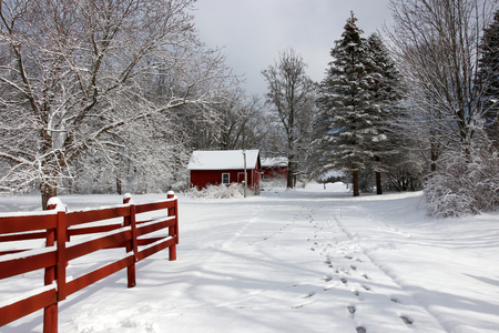 Rural landscape with red barns, wooden red fence, trees and road covered by fresh snow. Scenic winter view at Wisconsin, Midwest USA, Madison area. Фото со стока