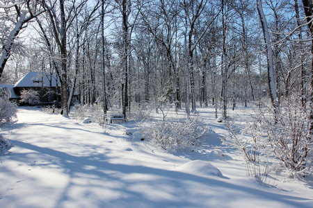 Scenic view with private house in covered by fresh snow forest during sunrise. Wisconsin nature background.