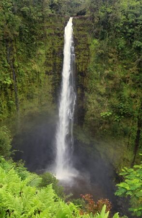 Scenic landscape with waterfall inside rainforest. Akaka Falls State Park, Hawaii Big Island, USA. Vertical composition.