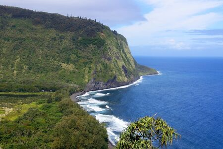Amazing Waipio Valley landscape. Aerial view with volcanic origin cliff in the bright blue Pacific ocean water and valley with residential neighborhood. Фото со стока