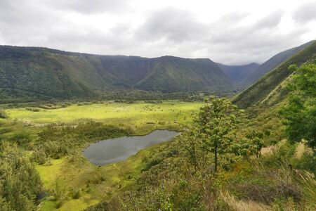 Scenic view of valley with pond and residential neighborhood between hills with lush tropical plants and trees at Waipio Valley. Фото со стока