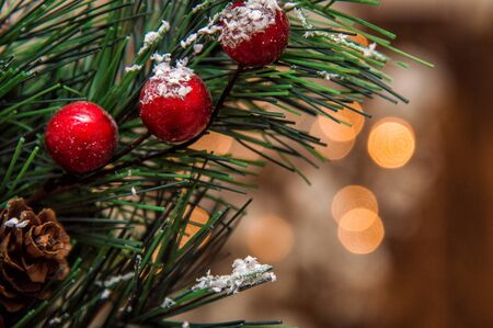Christmas theme. Close up. Juniper branch with red berries. Blurry lights of garland on the background. Copy space.