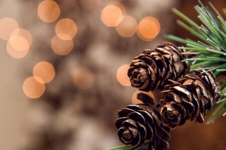 Christmas theme, card. Close up. Spruce branch with small fir cones. Blurry lights of garland on the background. Copy space. Banque d'images - 134795517