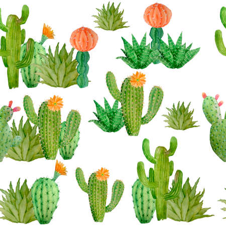 Watercolor hand drawn seamless pattern of tropical mexican cactus cacti succulents. Green natural house plants in pots botanical illsutration print interior design decoration for wallpaper textile.