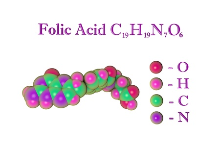 Molecular model of folic acid, vitaminB9. Atoms are represented as spheres with color coding: oxygen (red), hydrogen (pink), carbon (green), nitrogen (purple). 3d illustration