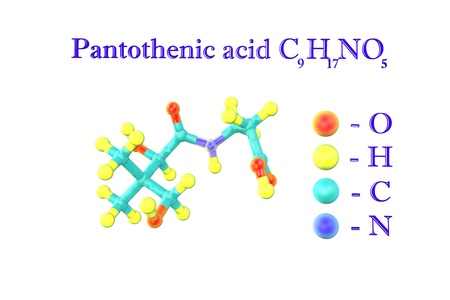Molecular model of pantothenic acid, vitamin B5. Atoms are represented as spheres with color coding: oxygen (red), hydrogen (yellow), carbon (light blue), nitrogen (blue). 3d illustration Standard-Bild - 121142997