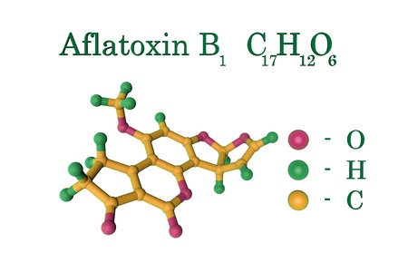 Aflatoxin B1, carcinogenic toxin produced by fungi Aspergillus. Atoms are represented as spheres with color coding: oxygen (pink), hydrogen (green), carbon (yellow). 3d illustration Stock Photo