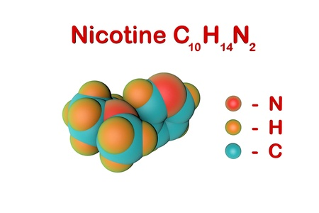 Molecular structure of nicotine. It is a plant alkaloid present in tobacco. Atoms are represented as spheres with color coding: nitrogen (red), hydrogen (orange), carbon (light blue). 3d illustration Standard-Bild - 121143098