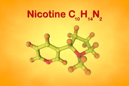 Molecular structure of nicotine. It is a plant alkaloid present in tobacco. Atoms are represented as spheres with color coding: nitrogen (red), hydrogen (orange), carbon (yellow). 3d illustration Standard-Bild - 121143105