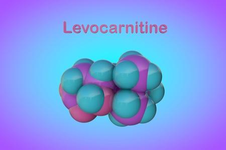 Molecular model of levocarnitine, L-carnitine, vitamin B11. Medical background. Scientific background. 3d illustration
