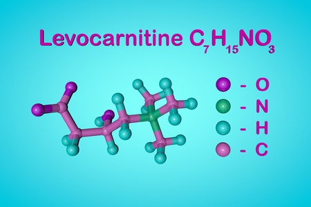Structural chemical formula and molecular model of levocarnitine, L-carnitine, vitamin B11. Medical background. Scientific background. 3d illustration