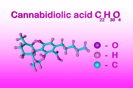 Structural chemical formula and molecular model of cannabidiolic acid (CBDA), an active ingredient in cannabis derived from the hemp plant. Medical background. Scientific background. 3d illustration Stock Photo
