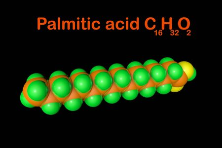 Structural chemical formula and molecular model of palmitic acid (palm oil), the most common saturated fatty acid. Medical background. Scientific background. 3d illustration Banque d'images - 131149777