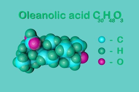 Structural chemical formula and molecular model of oleanolic acid, unsaturated organic acid. It has anti-cancer and antiviral effects. Medical background. Scientific background. 3d illustration 写真素材
