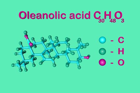 Structural chemical formula and molecular model of oleanolic acid, unsaturated organic acid. It has anti-cancer and antiviral effects. Scientific background. 3d illustration