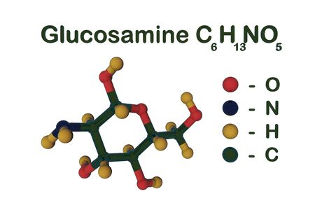 Structural chemical formula and molecular model of glucosamine. Glucosamine is used as a treatment for osteoarthitis. Scientific background. 3d illustration Banco de Imagens