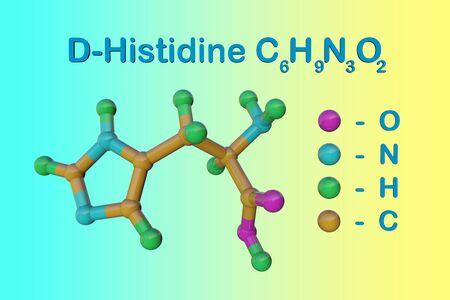 Structural chemical formula and molecular model of d-histidine, an optically active form of histidine havind D-configuration. Scientific background. 3d illustration Reklamní fotografie