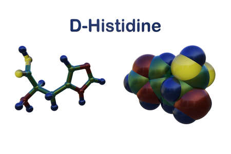 Molecular structure of d-histidine, an optically active form of histidine havind D-configuration. Medical background. Scientific background. 3d illustration
