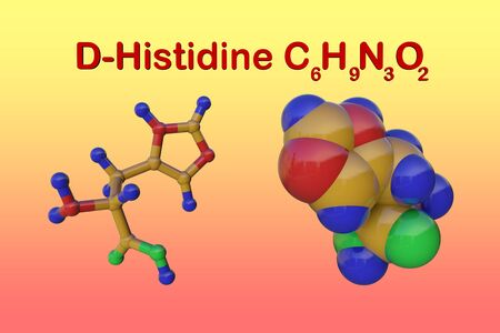 Structural chemical formula and molecular model of d-histidine, an optically active form of histidine havind D-configuration. Scientific background. 3d illustration Banque d'images - 131150601