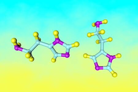 Molecular model of histamine. It is an organic nitrogenous compound involved in local immune responses and acting as a neurotransmitter. Medical background. Scientific background. 3d illustration 스톡 콘텐츠