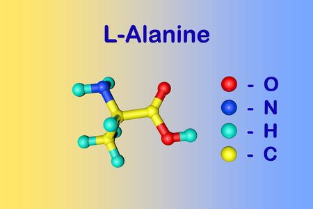 Molecular structure of l-alanine or alanine, an amino acid used in the biosynthesis of proteins. Medical background. Scientific background. 3d illustration Фото со стока