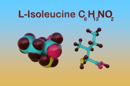 Structural chemical formula and molecular model of l-isoleucine or isoleucine, an amino acid used in the biosynthesis of proteins. 3d illustration