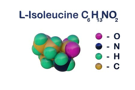 Structural chemical formula and space-filling molecular model of l-isoleucine or isoleucine, an essential amino acid in human. 3d illustration Фото со стока