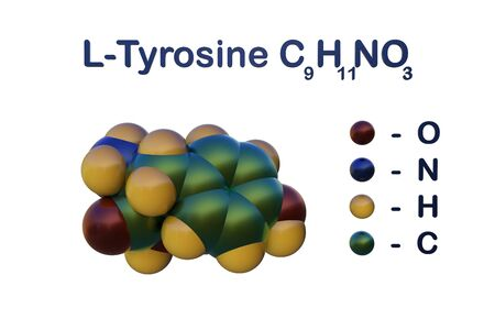 Molecular model of l-tyrosine. L-tyrosine is an amino acid, which is a building block of proteins that occurs naturally in the body. Scientific background. 3d illustration Banco de Imagens