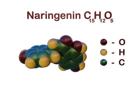 Structural chemical formula and space-filling molecular model of naringenin, a bitter tasting compound that can be found in several citrus fruits, bergamot, tomatoes and other fruits. 3d illustration