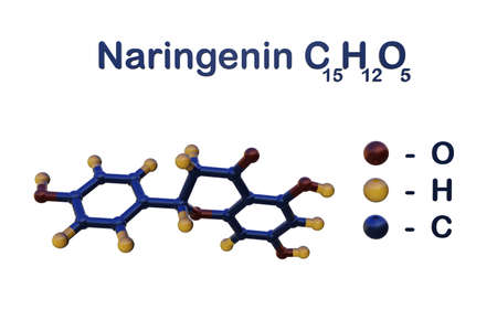Structural chemical formula and molecular model of naringenin, a bitter tasting compound that can be found in citrus fruits, bergamot, tomatoes and other fruits. Scientific background. 3d illustration Imagens