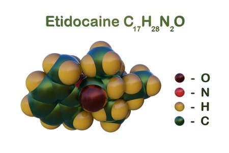 Structural chemical formula and space-filling molecular model of etidocaine, a local anaesthetic given by injection during surgical procedures, labor and delivery. 3d illustration