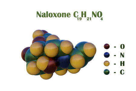 Structural chemical formula and space-filling molecular model of naloxone, an opioid antagonist and medication designed to rapidly reverse opioid overdose. Scientific background. 3d illustration