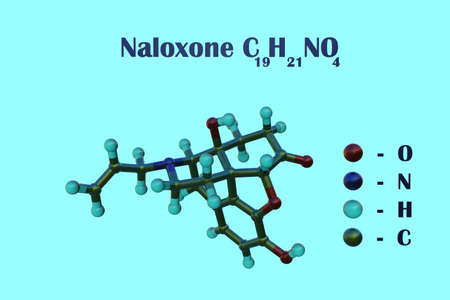 Structural chemical formula and molecular model of naloxone, an opioid antagonist and medication designed to rapidly reverse opioid overdose. Scientific background. 3d illustration