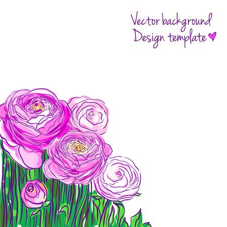 Illustration with blooming ranunculus Illustration