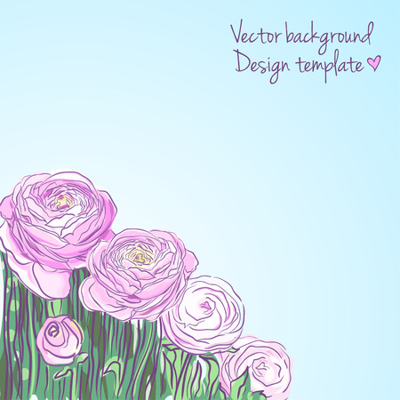 buttercup: Illustration with blooming ranunculus Illustration