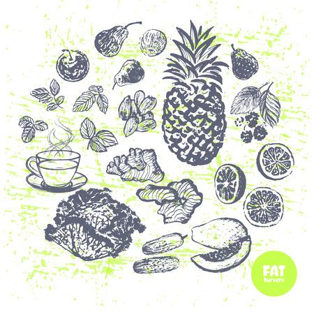 burners: Ink hand drawn fat burners fruits and veggies Illustration