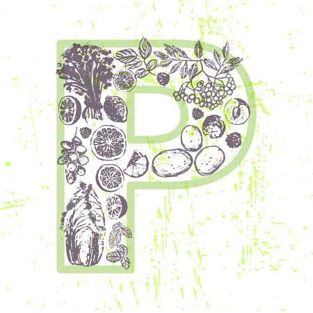 chokeberry: Ink hand drawn fruits and vegetables that contain vitamin P Illustration