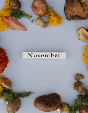 The month of November with the gifts of autumn. On the composition there are mushrooms, leaves, moss. The composition is located on a gray background. Imagens