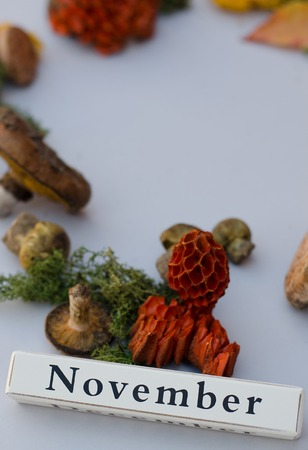 The month of November with the gifts of autumn. On the composition there are mushrooms, leaves, moss. The composition is located on a gray background.
