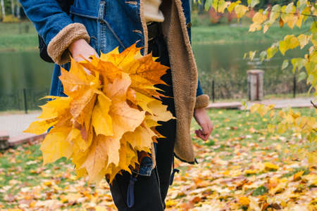 Bouquet of yellow maple leaves in the hand of a girl in an autumn park
