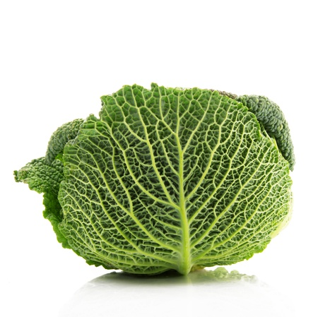fresh savoy cabbage in white background