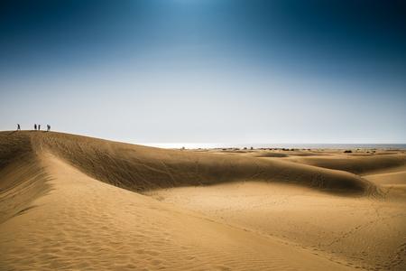 desierto: dunas paisaje que desciende hasta el mar