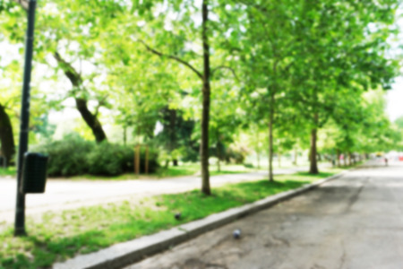 intentionally: background of park in the city with intentionally blur filter