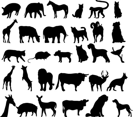 silhouettes of differente animals Vector