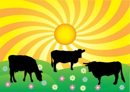 Summer landscape Stock Vector - 5977648