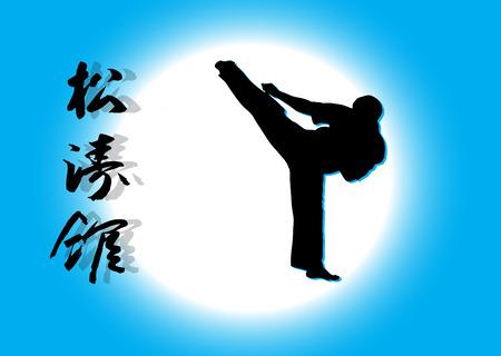 Karate  Ilustracje wektorowe