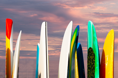 Paddle boards racked against a seascape sunset sky with ocean background