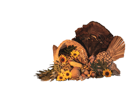 Thanksgiving cornucopia centerpiece with sunflowers, turkey and turkey feathers, oak leaves, celebrating fall autumn harvest holiday, seasonal symbols of plenty and abundance isolated on white background