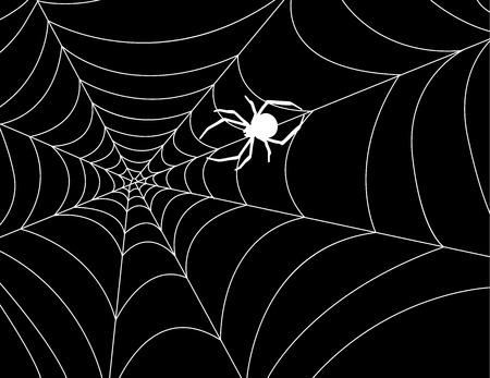 Dark vector background with spider web in the corner.