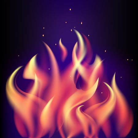 fire flame: Red burning fire flame on black purple background. Illustration